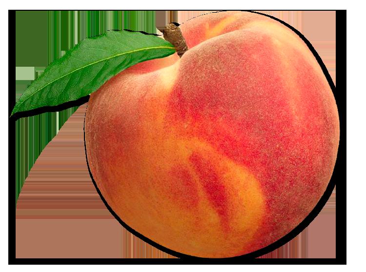 Peachy Iced 🍵