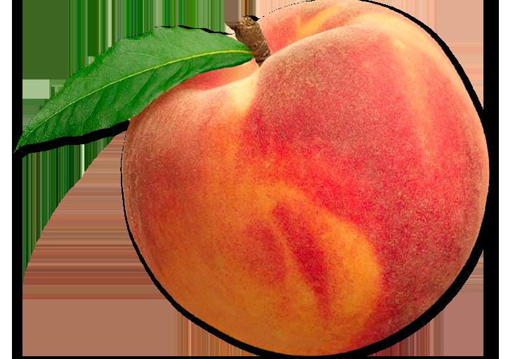 Peachy Iced GreenTea